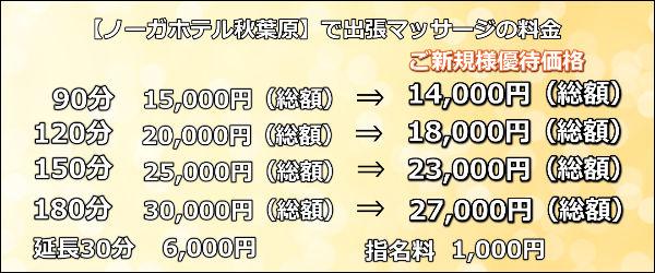 【ノーガホテル秋葉原】で出張マッサージの料金