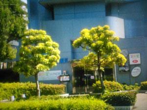 デイナイスホテル東京